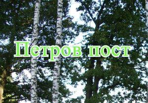 Петровский пост фото записи